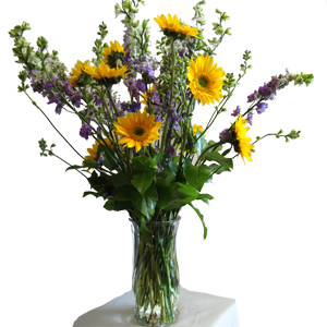 Larkspur and miniature sunflowers