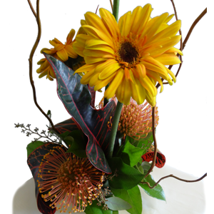 Gerber Daisies Pin Cushion Portea